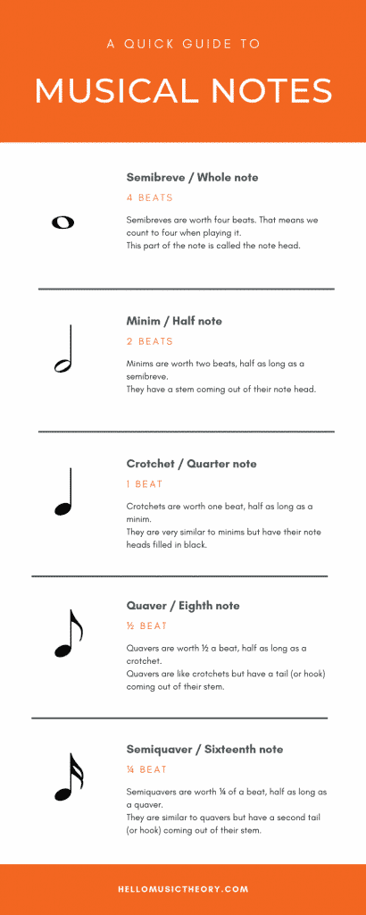 Infographic of the types of musical notation