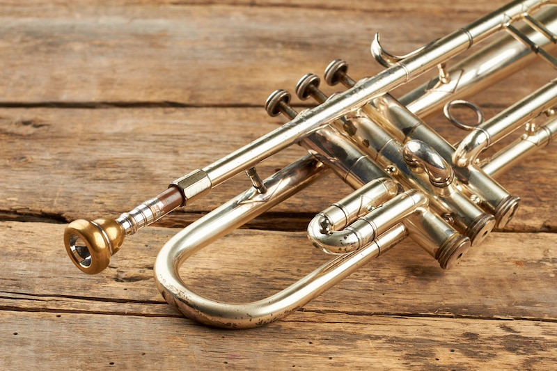 The 10 Best Cheap Trumpets in 2021: Reviews and Buyer's Guide