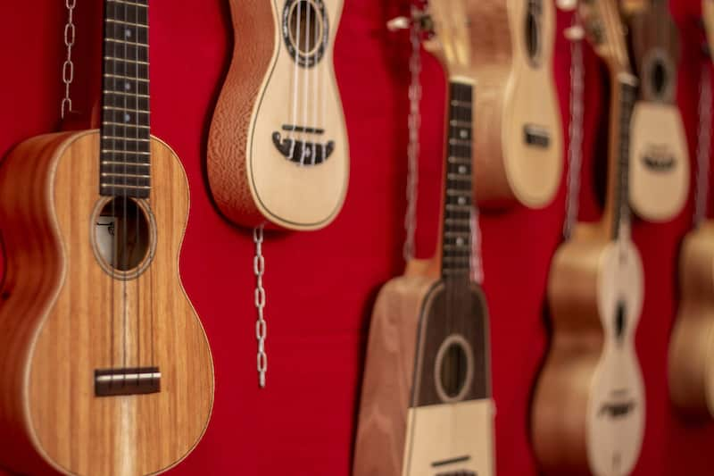 The 11 Different Types of Ukulele
